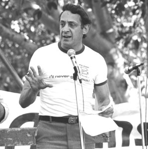 harvey-milk-for-blog